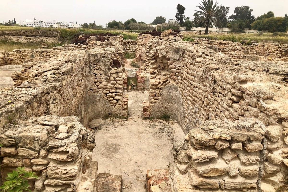 ясмин хаммамет тунис