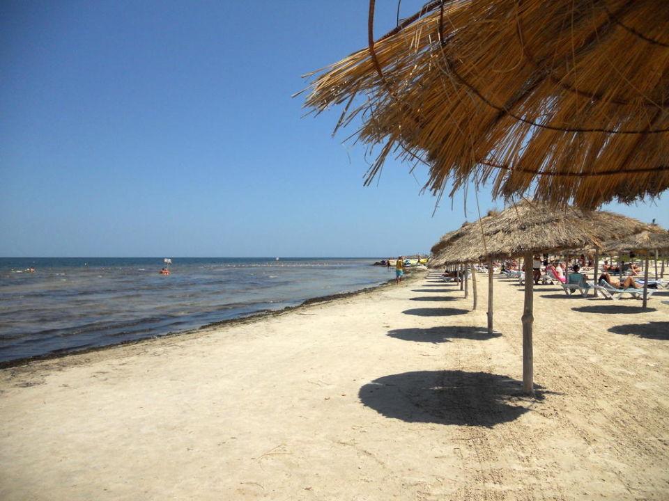 тунис монастир море